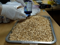Hanoi Customs successfully closes large specialised project of drug, seizing six people