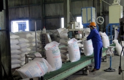 Imported sugar dominates the market