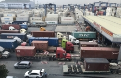 Transportation charges increase, seafood enterprises beg the Prime Minister for help