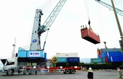 Shipping lines do not transparently list freight rates