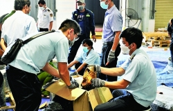 Implementation of CITES in the field of customs - Many difficulties need to be solved