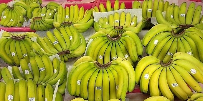 Bananas are mostly imported to Korea due to unfavourable farming conditions. Source: Internet