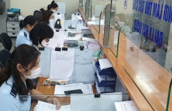 Hai Phong Customs actively collects business information on the electronic system