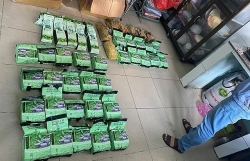 Nearly 50kg of narcotics disguised in fruit basket