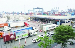 HCM City export goods still increase during pandemic