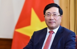 Deputy Prime Minister Pham Binh Minh appointed as Director of National Steering Committee 389