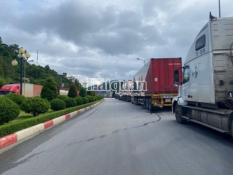 Create a priority channel for vehicles transporting agricultural products and fresh fruits for export. Photo: Danh Tùng