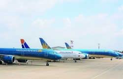 Aviation sector plans to reopen domestic routes