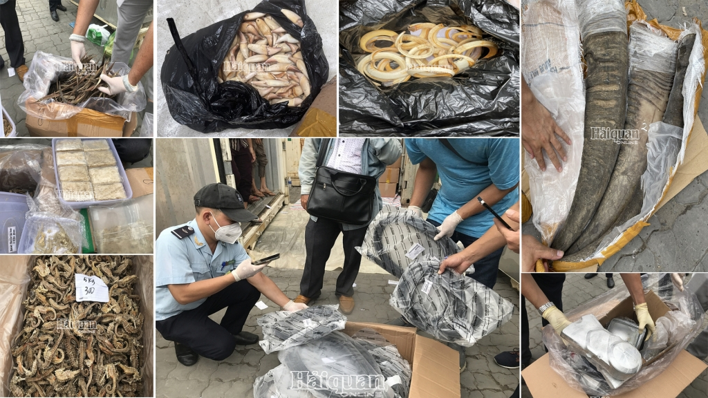 Over two tonnes of dried seahourse and abalone, shredded bird's nest smuggled in containers of blood cockles
